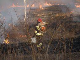 пожары мазовия