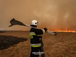 пожар польша национальный парк