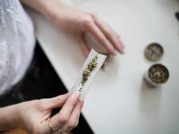Где купить марихуану в Польше легально