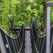 В местечке под названием Помехувек, рядом с Новы-Двур-Мазовецкии Модлином, есть весьма необычное развлечение – подвесная тропа среди крон деревьев! Такая прогулка точно запомнится надолго.