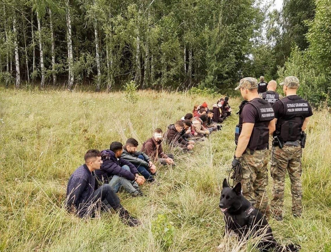 В Польше нелегальных мигрантов из Беларуси будут отправлять обратно