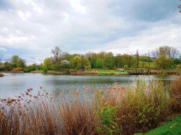 отравили озеро в парке варшавы